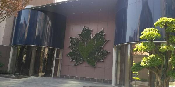 上海华山公寓遮阳窗帘项目